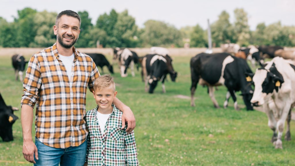 Vater und Sohn autark leben mit Rindern